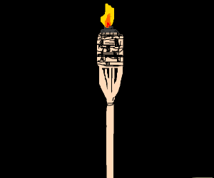 a torch in the dark