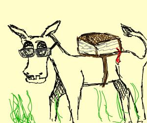 Geeky Mule