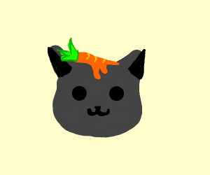 melting carrot on top of a cat