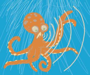 Sonic octopus
