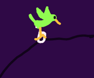 Dat boi is a birb on a unicycle tightroping