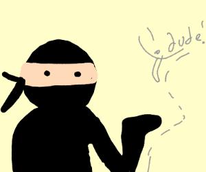 Ninja taunting invisible person