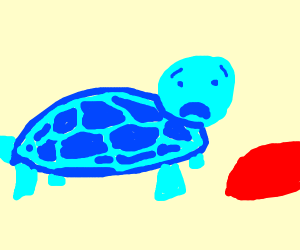 Distraught blue turtle looks at red rock