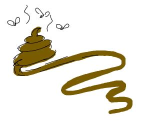 a VERY long poop