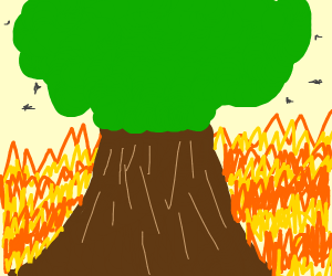 Tree in a world of fire containing birds.