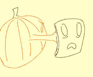 Pumpkin punches Book