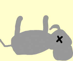 Elephant Dying