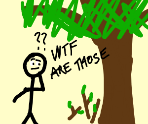 Person puzzled by sticks and twigs