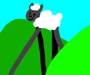 Lone sheep among green verdant hills.