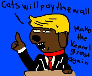 mayor doggo