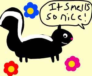 Skunk with fresh scent