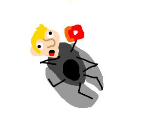 Dying moth
