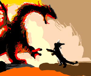 Wizard cat fighting red dragon