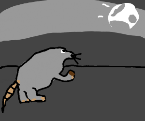 a mouse looks at a moon