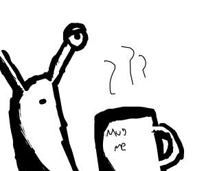 snail drinks coffee