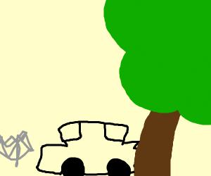 car crashed into a tree