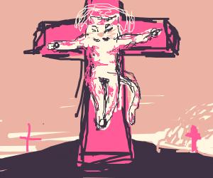 Cat is a Jesus