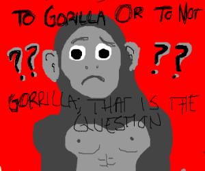 Gorilla ??