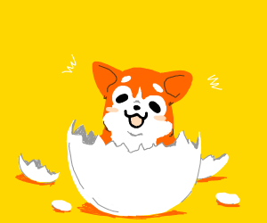 Corgi puppy hatching out of egg.