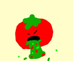 vomiting tomato