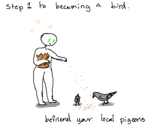 How To Become A Bird