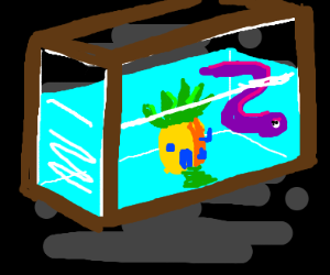 SpongeBob aquarium with an eal