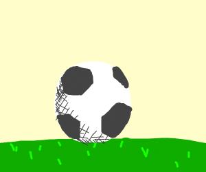 soccer ball (heh) in grass