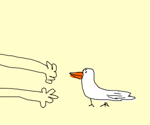 arms reaching for a duck