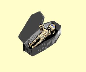 A mummy in a coffin