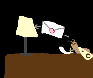 Moth writtes a letter to the lamp