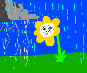lightning and sad flower