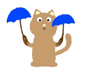 Umbrella-handed cat