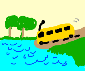 School bus driving into a lake