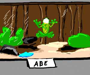 Confused frog named Abe