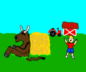 Bull hiding behind a hay from a little boy