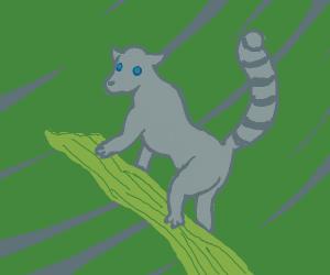 Lemur clings to tree branch