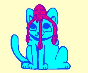Blue cat befriends pink Squid