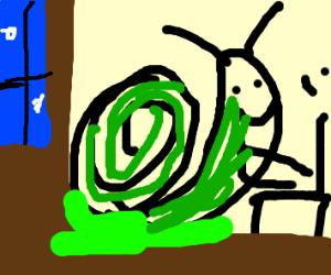 Snail Programming