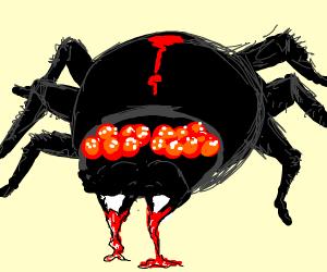 Vampire spider