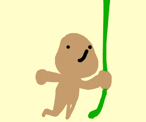monkey swinging on a vine