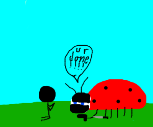 ladybug ninja threatening person