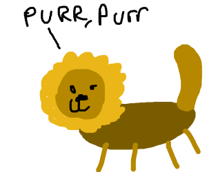 "A ""special"" lion"
