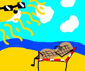 Peanut sunbathing