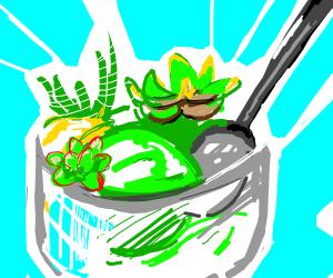 Succulent Sorbet