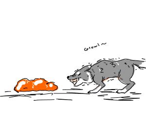 Orange Slime V.S. Dog