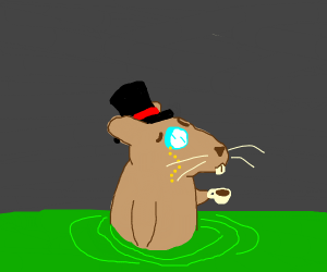 fancy sewer rat
