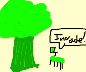 Brocolli tree gets invaded by peapod insect