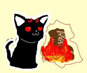 Devil cat, destroying boots
