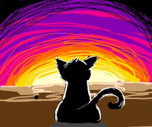 Cat silhouette in the sunset