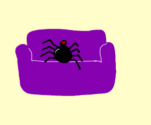 Spider on purple couch